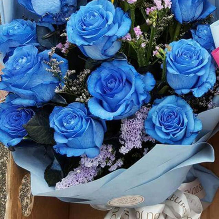1-doz-Blue-Roses-Bouquet