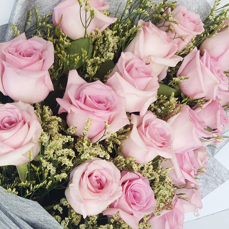 1-doz-Light-Pink-Roses-Bouquet