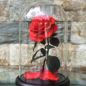GGG-Luxury-Flower-Glass-Dome-Classic