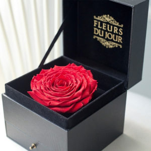 Giant-Preserved-Rose-in-Box