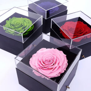 Giant-Preserved-Rose-in-Box-with-Acrylic-Cover