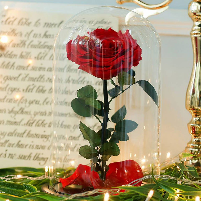 Giant-Preserved-Rose-in-Glass-Dome