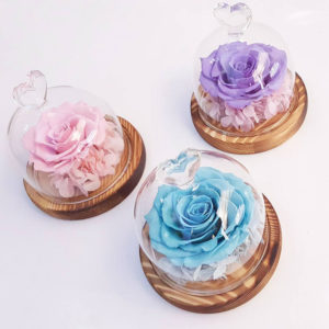 Sweetheart-Glass-Dome